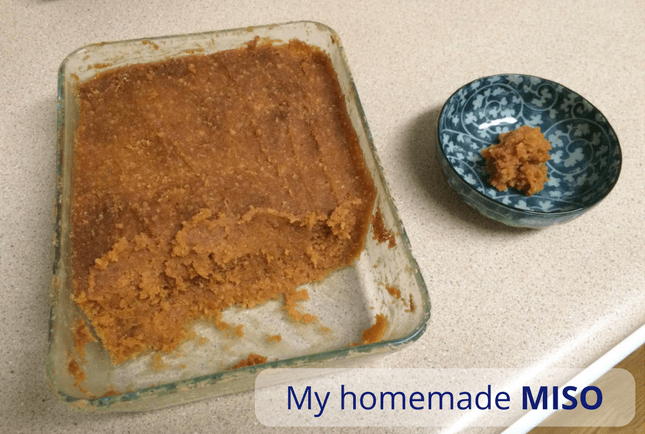 what is miso paste